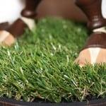grass_zoom
