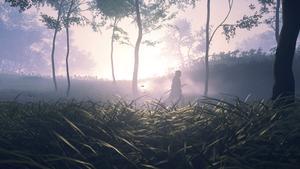 Jin traverse un chemin parmis quelques arbres avec le soleil qui brille à travers une brume assez épaisse.