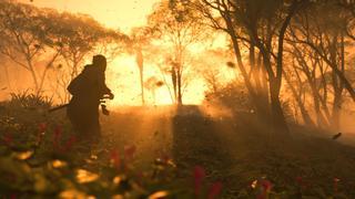 Jin en train de courir à travers une forêt de bon matin. Il y a de la brume qui masque ce qui se trouve au loins. La lumière du soleil levant perce ce voile doré à travers les arbres tandis que le vent soulève quelques feuilles tombées de leurs arbres…